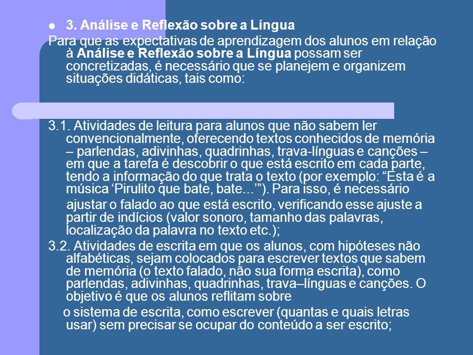 3. Análise e Reflexão sobre a Língua