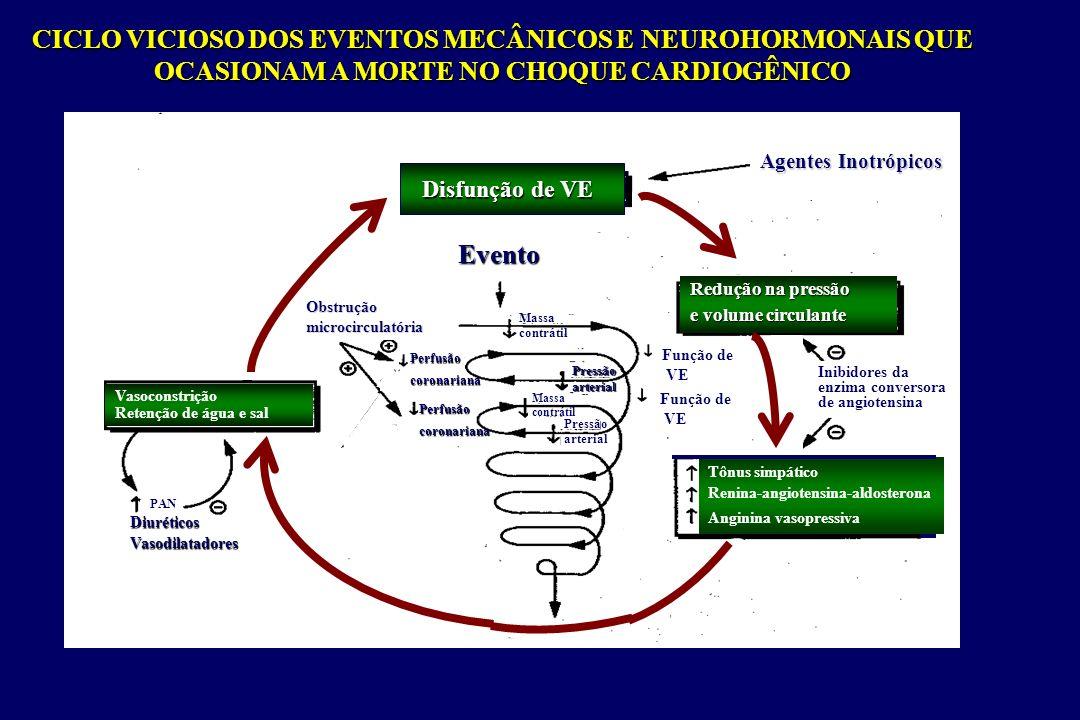 CICLO VICIOSO DOS EVENTOS MECÂNICOS E NEUROHORMONAIS QUE