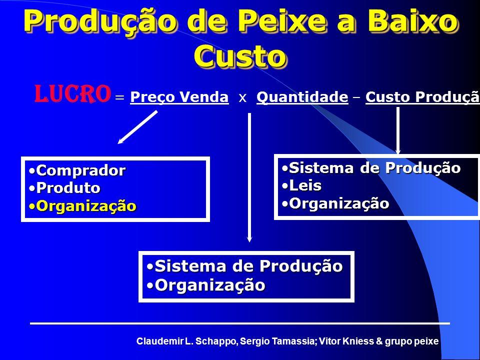 Produção de Peixe a Baixo Custo