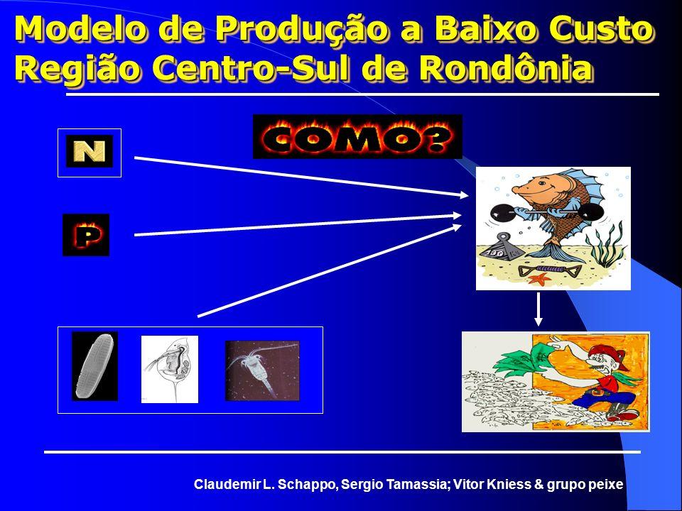 Modelo de Produção a Baixo Custo Região Centro-Sul de Rondônia