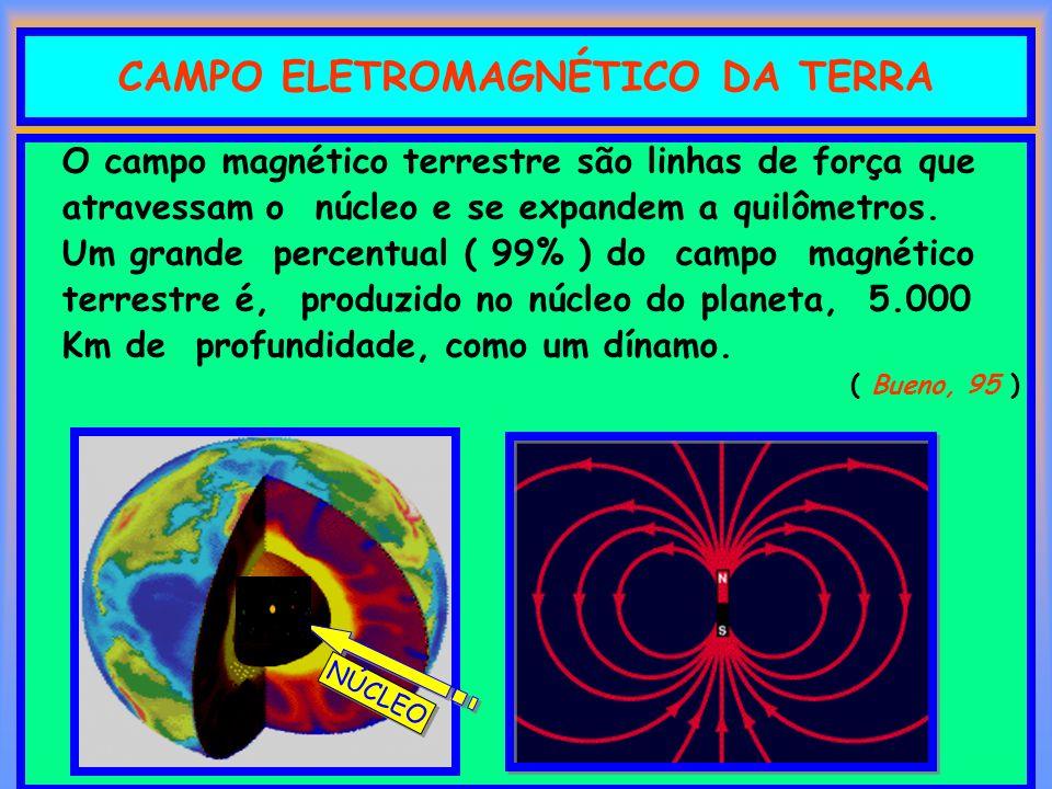 CAMPO ELETROMAGNÉTICO DA TERRA