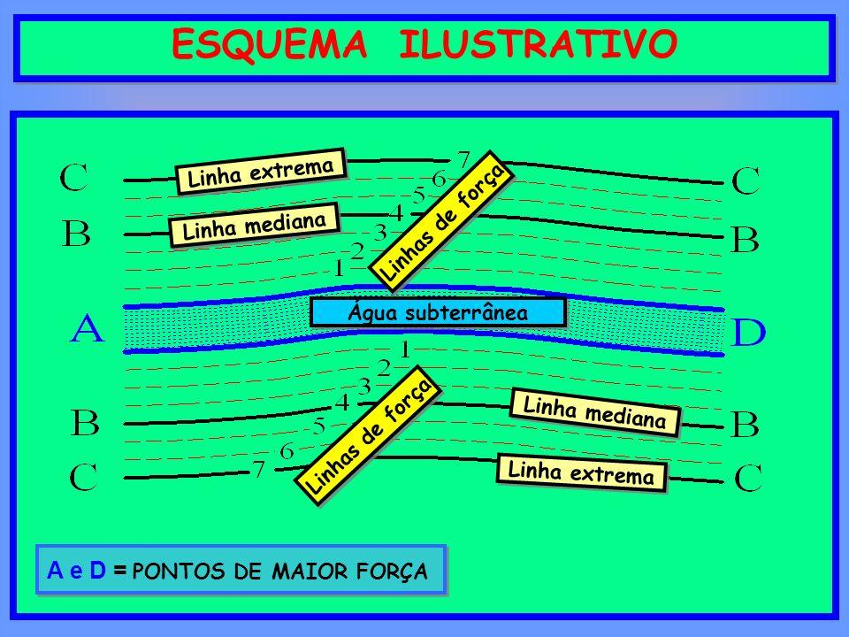 A e D = PONTOS DE MAIOR FORÇA