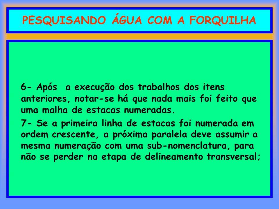PESQUISANDO ÁGUA COM A FORQUILHA