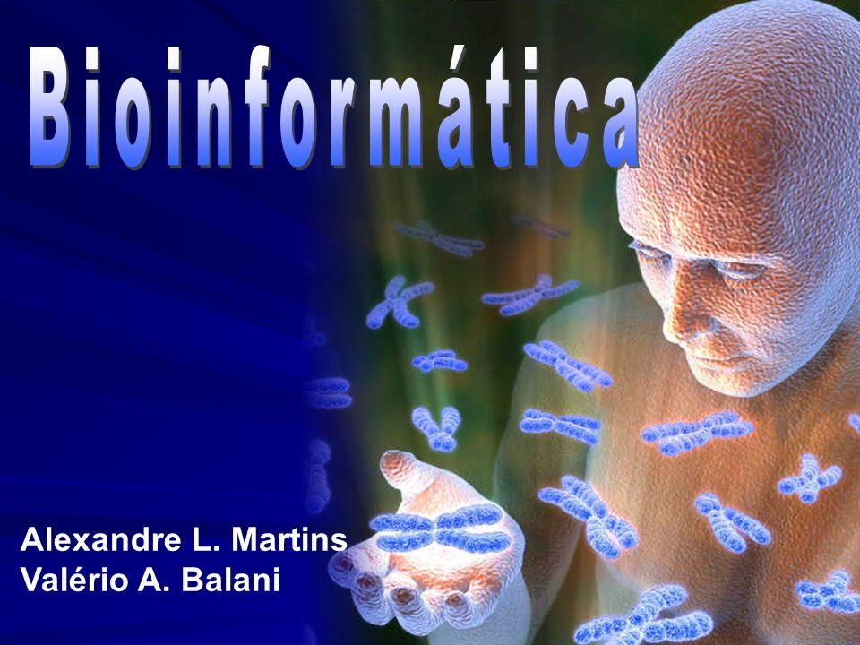 Bioinformática Alexandre L. Martins Valério A. Balani