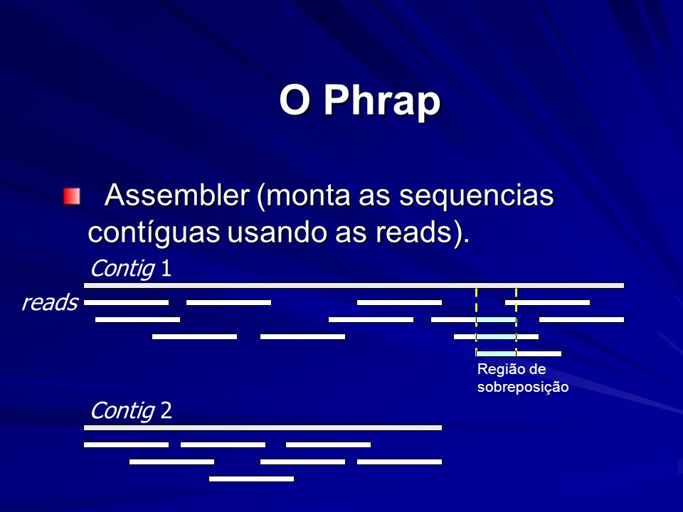 O Phrap Assembler (monta as sequencias contíguas usando as reads).