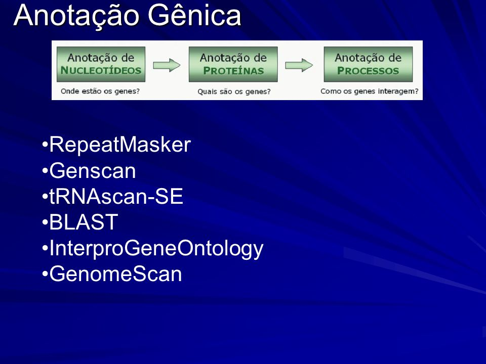 Anotação Gênica RepeatMasker Genscan tRNAscan-SE BLAST