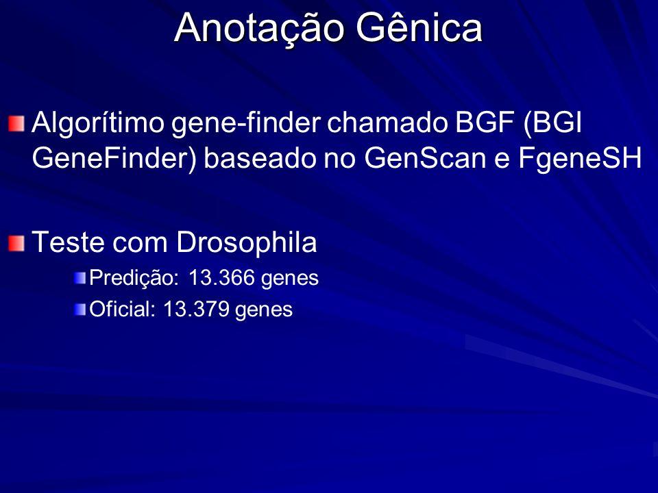 Anotação Gênica Algorítimo gene-finder chamado BGF (BGI GeneFinder) baseado no GenScan e FgeneSH. Teste com Drosophila.