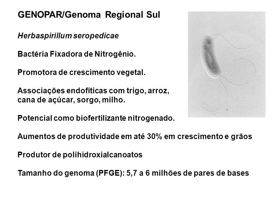 GENOPAR/Genoma Regional Sul