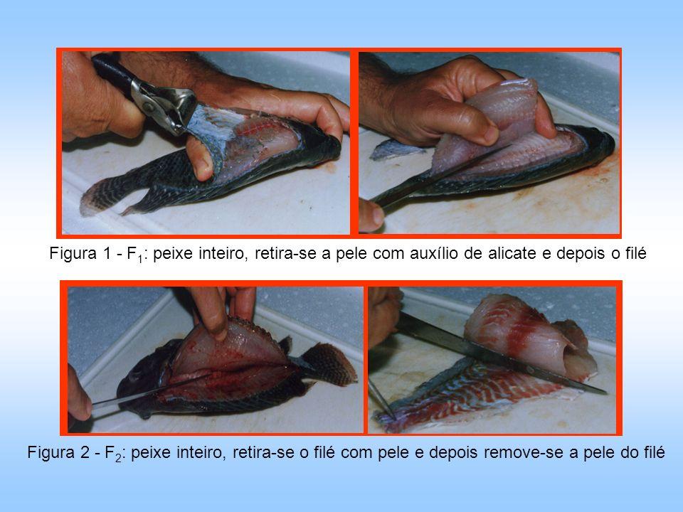 Figura 1 - F1: peixe inteiro, retira-se a pele com auxílio de alicate e depois o filé