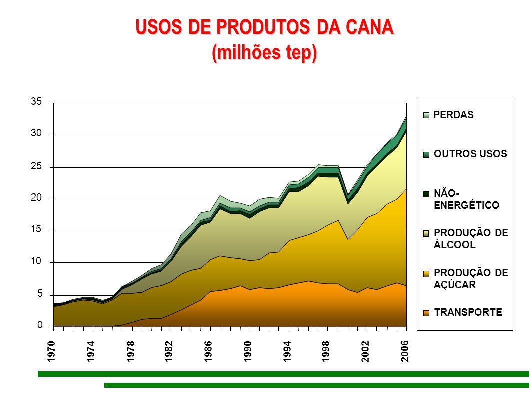 USOS DE PRODUTOS DA CANA