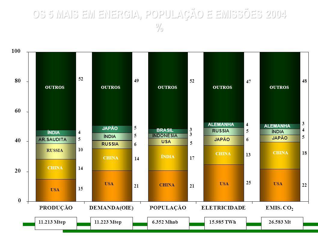 OS 5 MAIS EM ENERGIA, POPULAÇÃO E EMISSÕES 2004