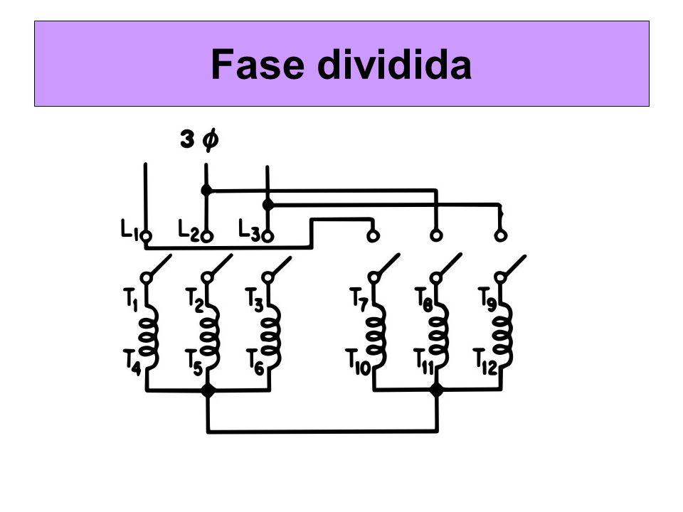 Fase dividida