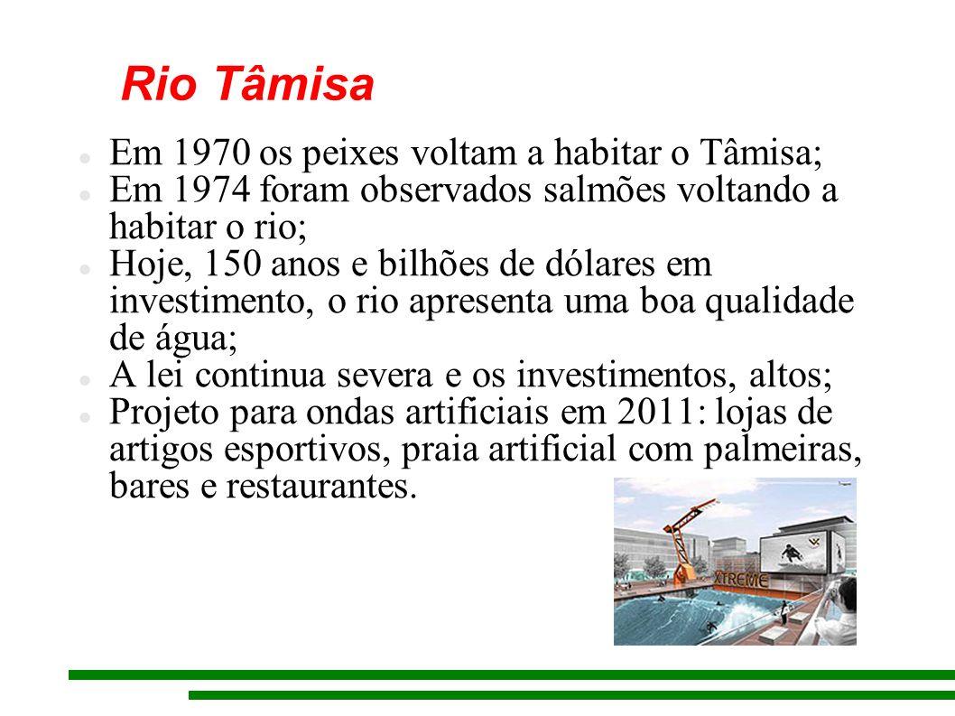 Rio Tâmisa Em 1970 os peixes voltam a habitar o Tâmisa;