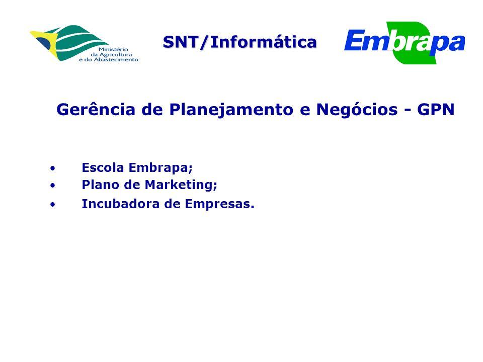 Gerência de Planejamento e Negócios - GPN