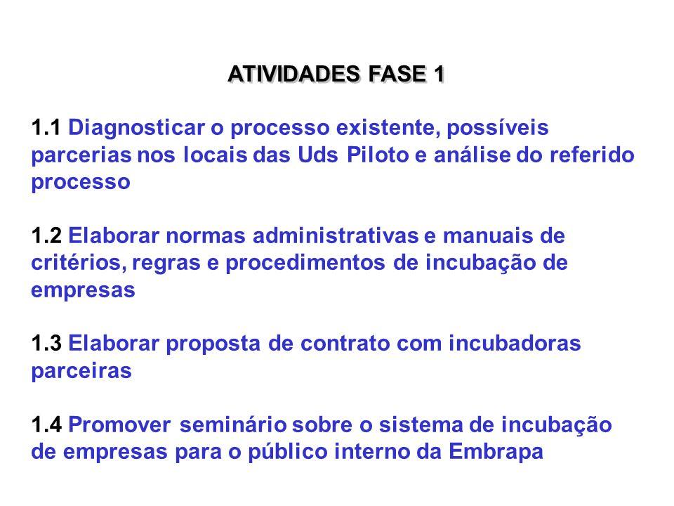 ATIVIDADES FASE 11.1 Diagnosticar o processo existente, possíveis parcerias nos locais das Uds Piloto e análise do referido processo.