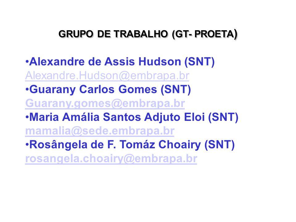 GRUPO DE TRABALHO (GT- PROETA)