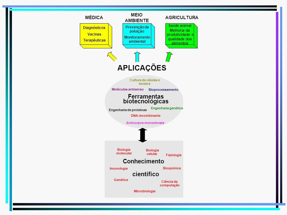 APLICAÇÕES Ferramentas biotecnológicas Conhecimento científico MÉDICA