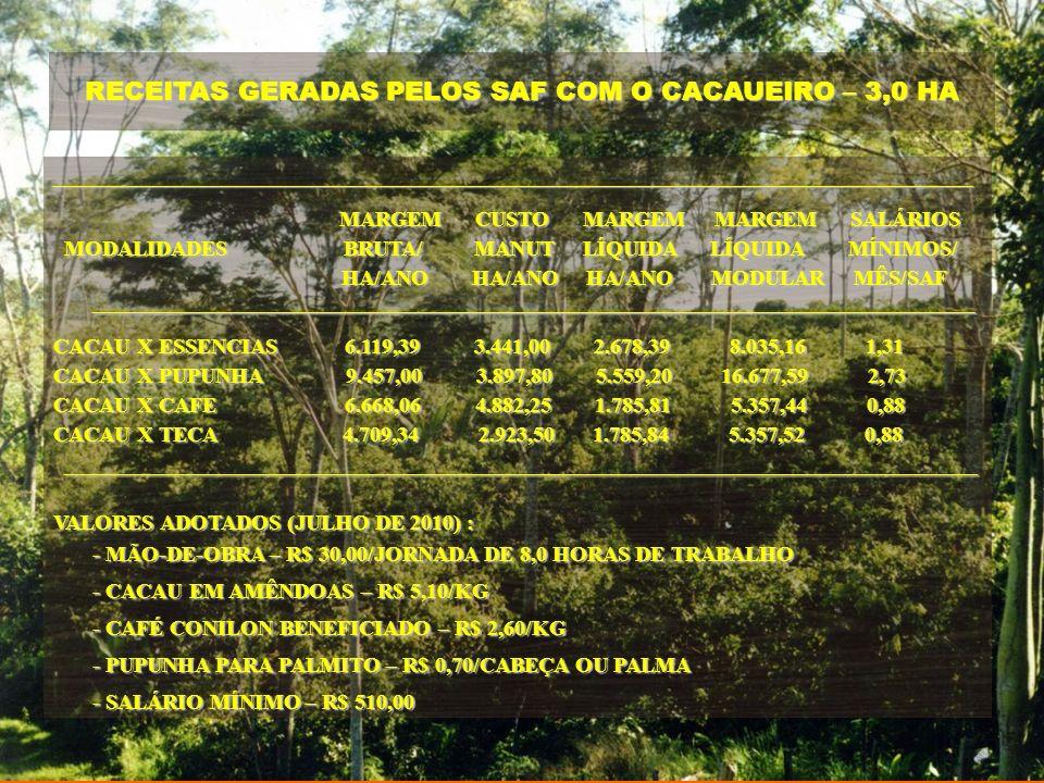 RECEITAS GERADAS PELOS SAF COM O CACAUEIRO – 3,0 HA
