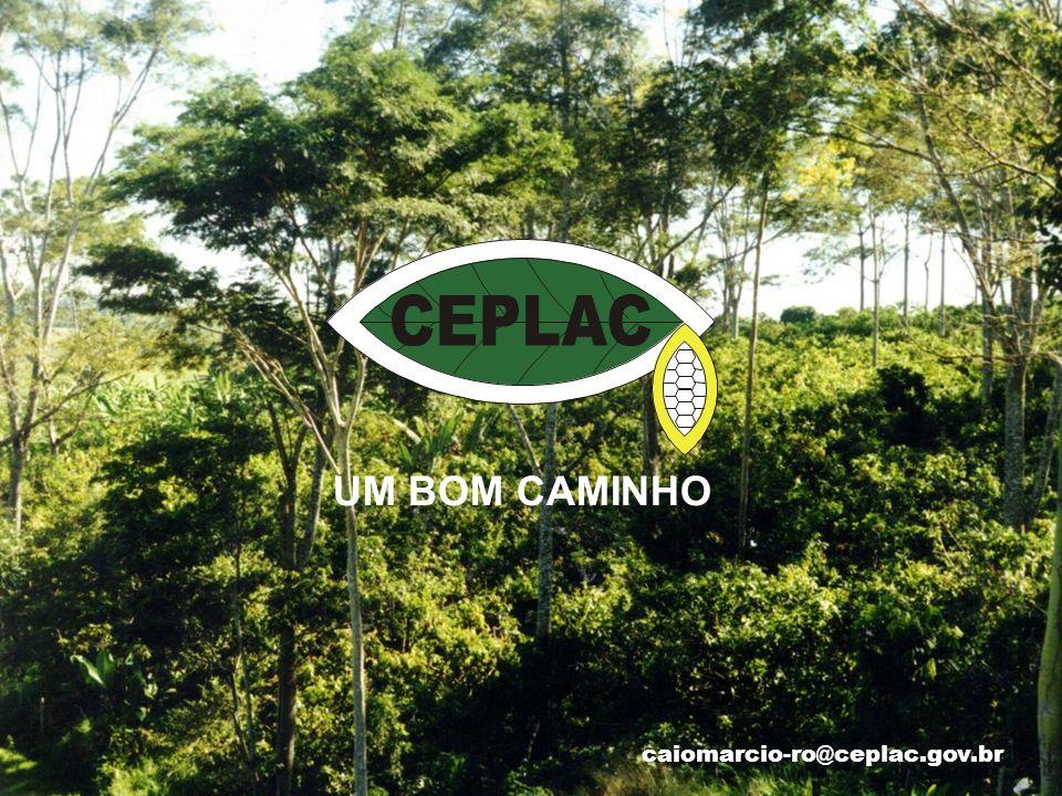 UM BOM CAMINHO caiomarcio-ro@ceplac.gov.br