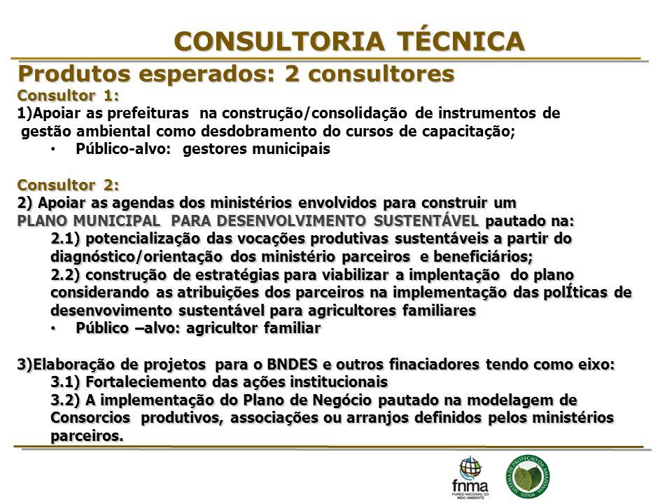 CONSULTORIA TÉCNICA Produtos esperados: 2 consultores 15 Consultor 1: