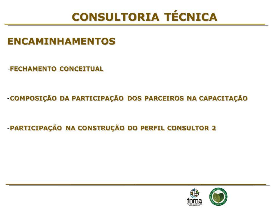 CONSULTORIA TÉCNICA ENCAMINHAMENTOS 16 FECHAMENTO CONCEITUAL