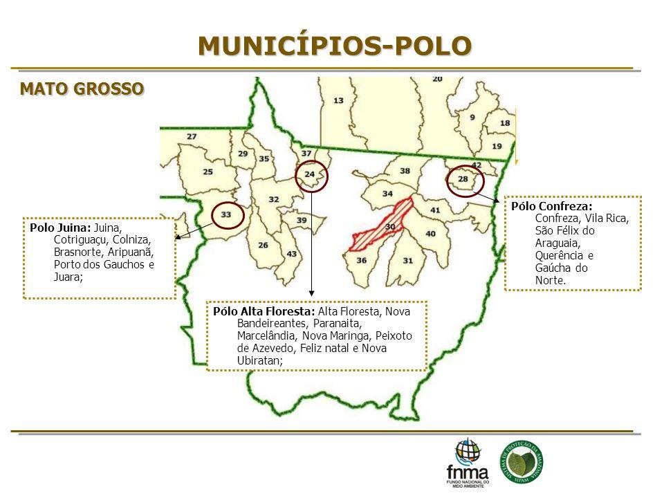 MUNICÍPIOS-POLO MATO GROSSO 7 7 7