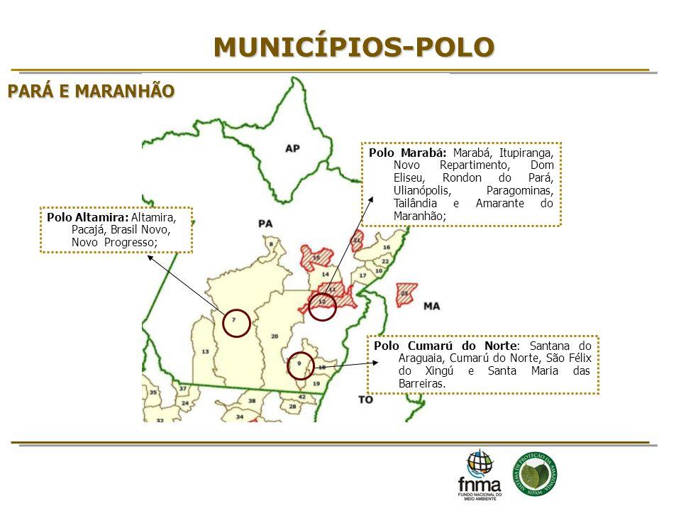 MUNICÍPIOS-POLO PARÁ E MARANHÃO 8 8 8