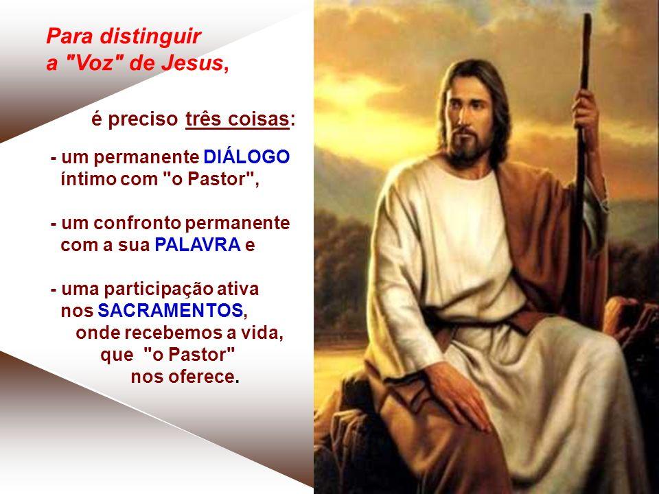 Para distinguir a Voz de Jesus,