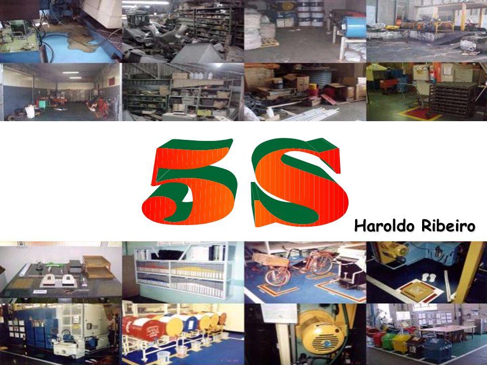 Haroldo Ribeiro