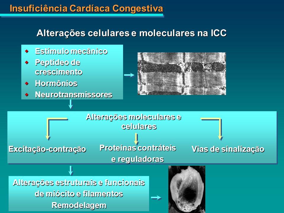 Alterações celulares e moleculares na ICC