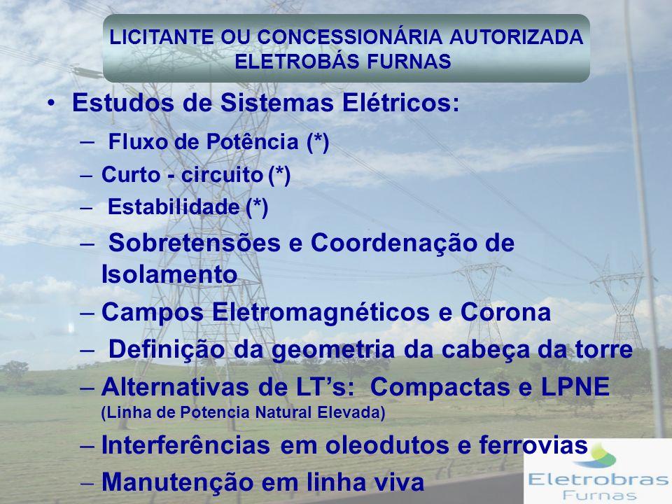 LICITANTE OU CONCESSIONÁRIA AUTORIZADA
