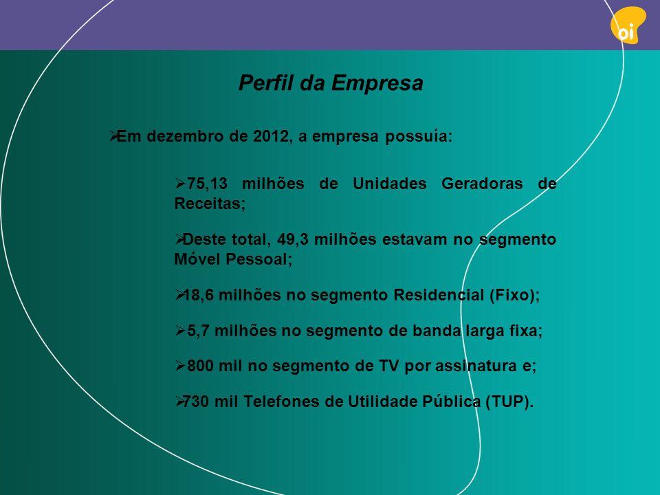 Perfil da Empresa Em dezembro de 2012, a empresa possuía: