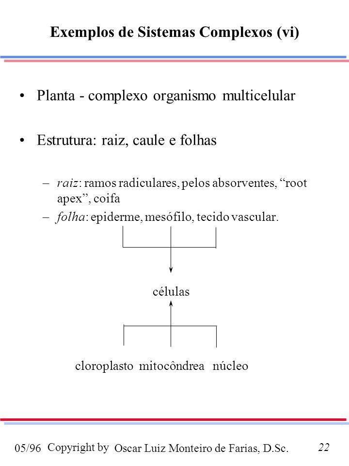 Exemplos de Sistemas Complexos (vi)