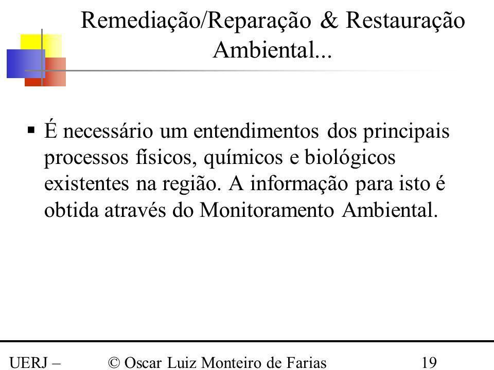 Remediação/Reparação & Restauração Ambiental...