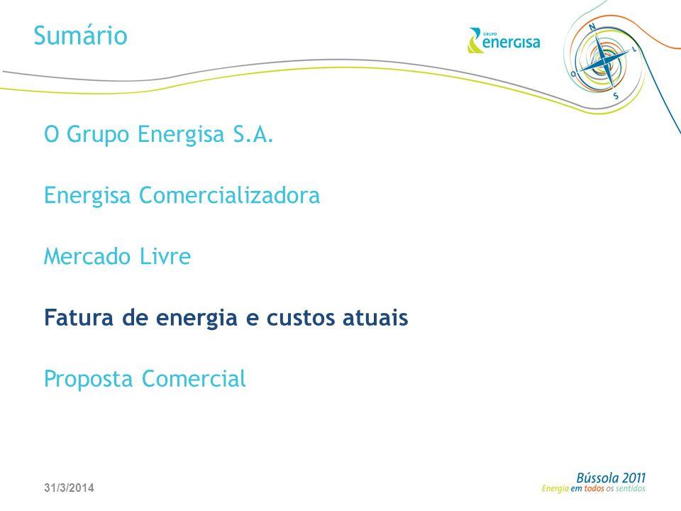 Sumário O Grupo Energisa S.A. Energisa Comercializadora Mercado Livre