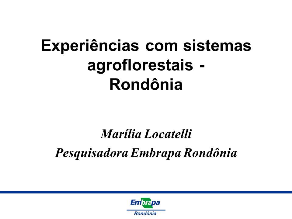 Experiências com sistemas agroflorestais - Rondônia