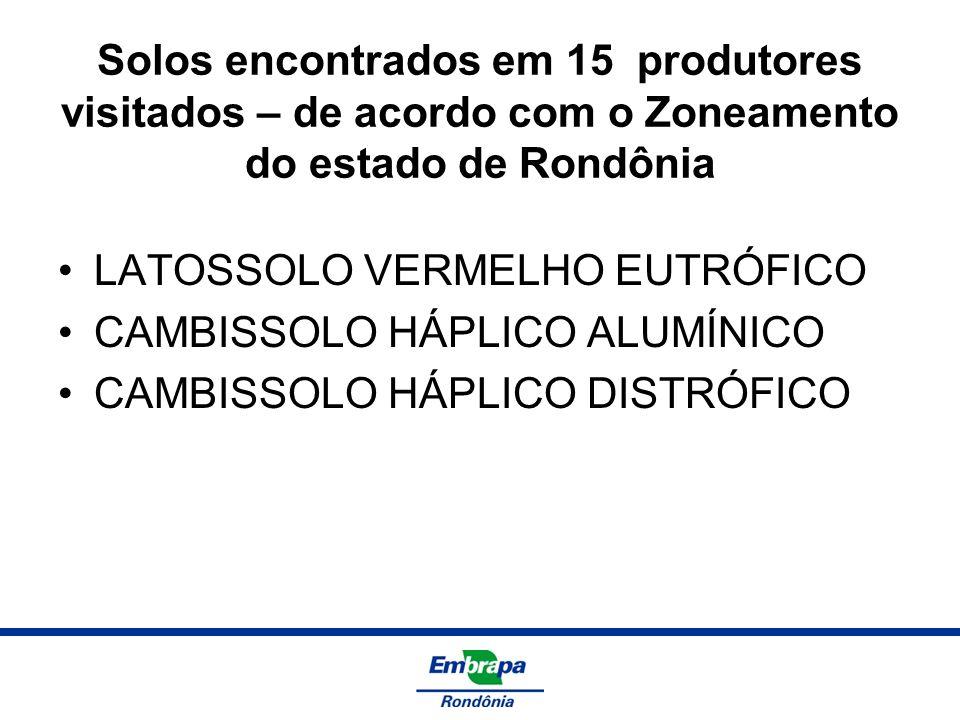 Solos encontrados em 15 produtores visitados – de acordo com o Zoneamento do estado de Rondônia