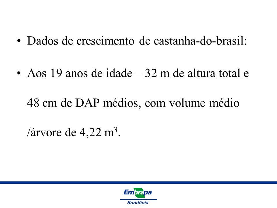 Dados de crescimento de castanha-do-brasil: