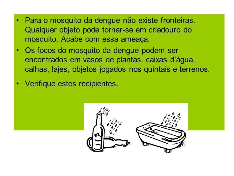 Para o mosquito da dengue não existe fronteiras