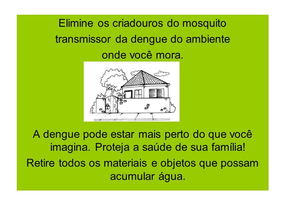Elimine os criadouros do mosquito transmissor da dengue do ambiente