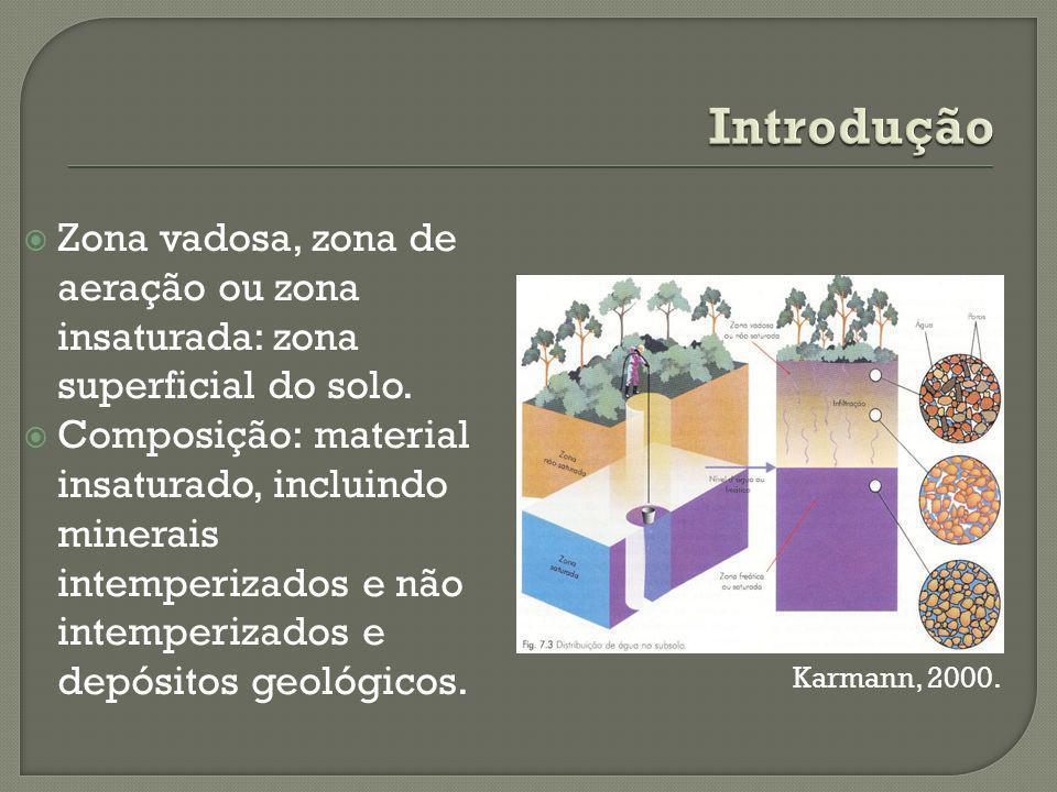 Introdução Zona vadosa, zona de aeração ou zona insaturada: zona superficial do solo.