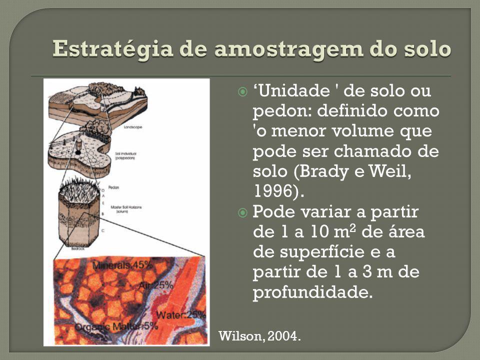 Estratégia de amostragem do solo