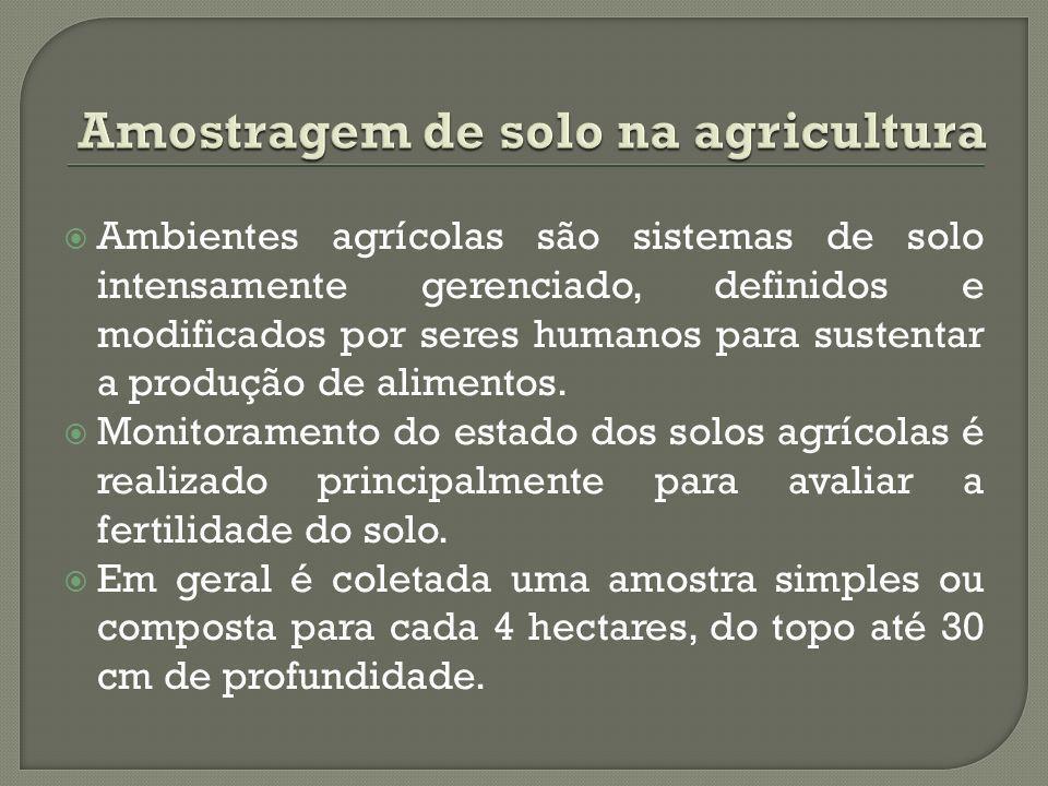 Amostragem de solo na agricultura