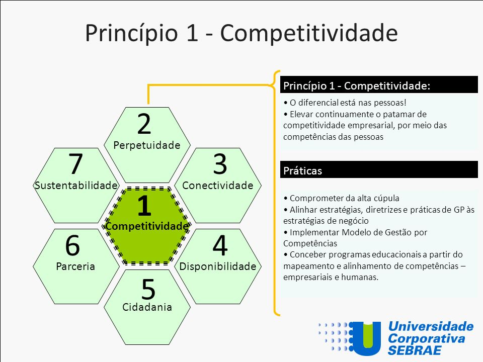 Princípio 1 - Competitividade