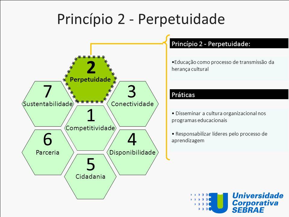 Princípio 2 - Perpetuidade