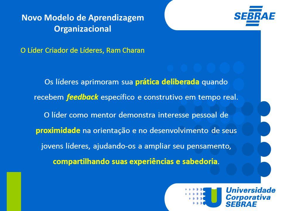 Novo Modelo de Aprendizagem Organizacional
