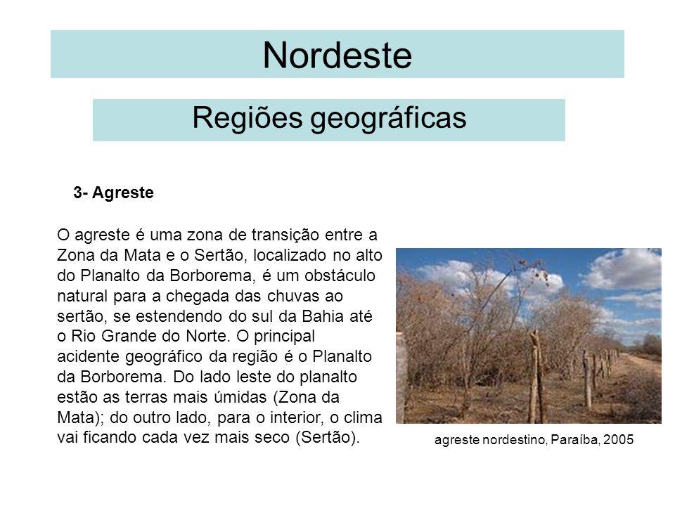 Nordeste Regiões geográficas 3- Agreste