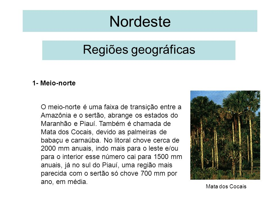 Nordeste Regiões geográficas 1- Meio-norte