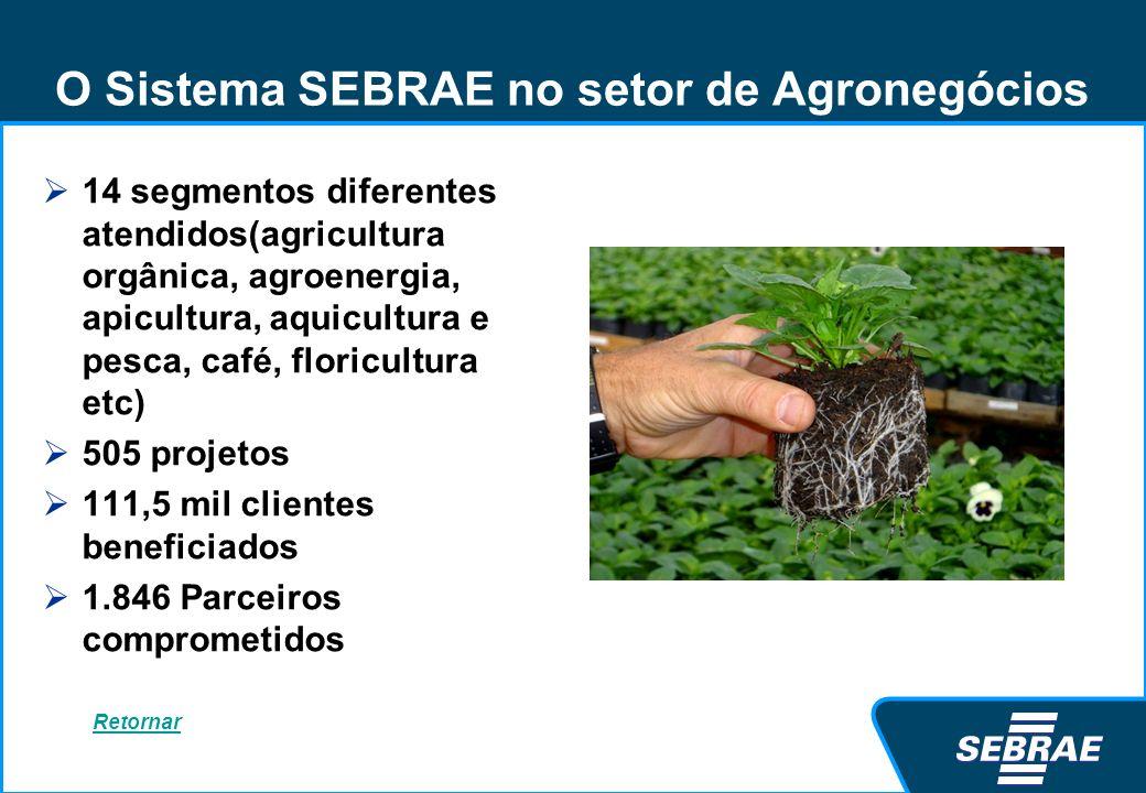 O Sistema SEBRAE no setor de Agronegócios