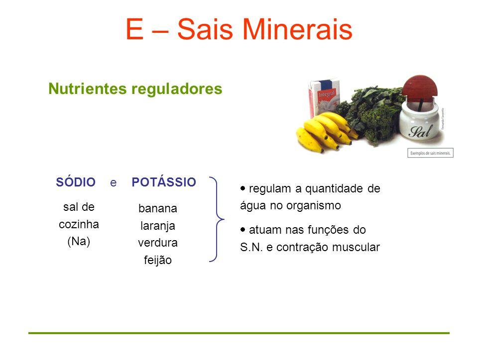 E – Sais Minerais Nutrientes reguladores SÓDIO e POTÁSSIO